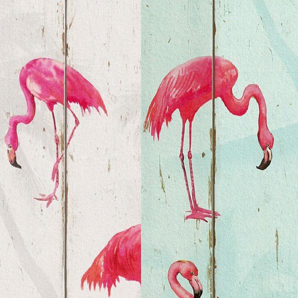 Adesivo Para Levantar Mama Funciona ~ Adesivo papel de parede Flamingos na Madeira City Decor